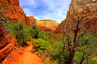 Zion National Park 0127