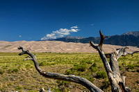 Great Sand Dunes NP 4525