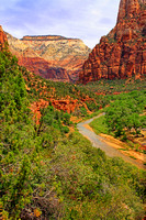 Zion National Park 0130